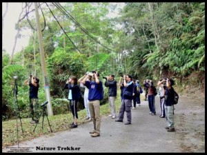 Bird-Watching organised by Nature Trekker1