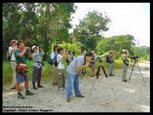 Bird-Watching organised by Nature Trekker2
