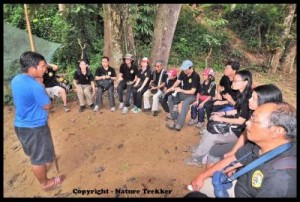 Guide Teaching at Taman Negara2
