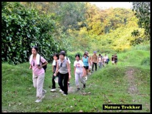 Jungle Trekking5