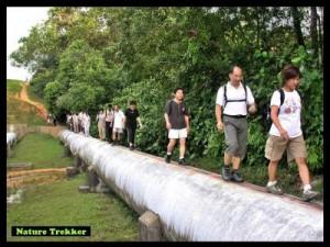 Jungle Trekking organised by Nature Trekker
