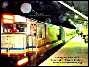Paranormal Shots at Taman Negara Railway Station1