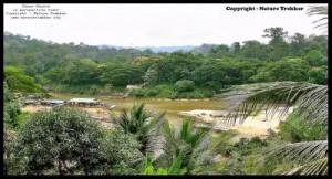 Taman Negara Landscape View