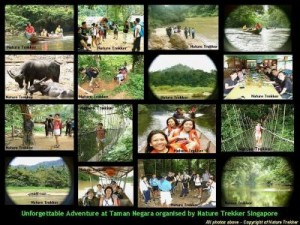 Taman Negara organised by Nature Trekker