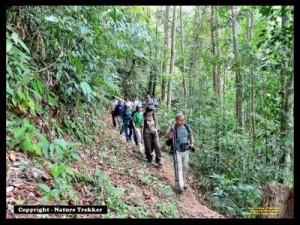 Trekking Photo2x